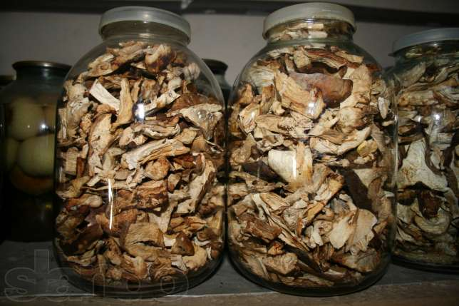 Сколько хранить сушеные грибы в домашних условиях 69