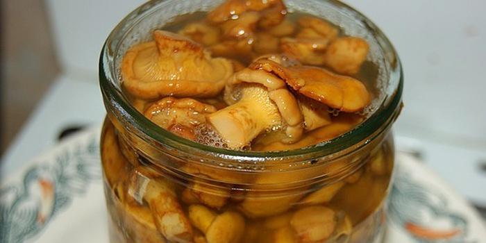 Как мариновать грибы в домашних условиях лисички 374