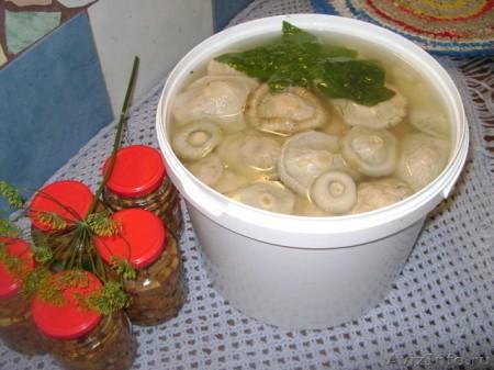 вкусные маринованные грузди рецепт с фото