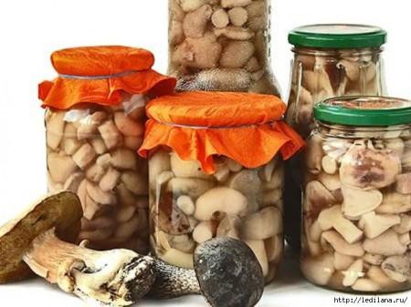 Рецепты заготовок грибов на зиму с фото